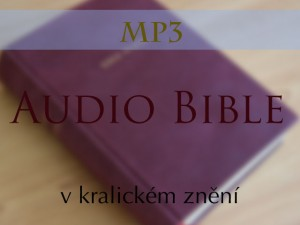 Proud_web_audiobible_MP3_button